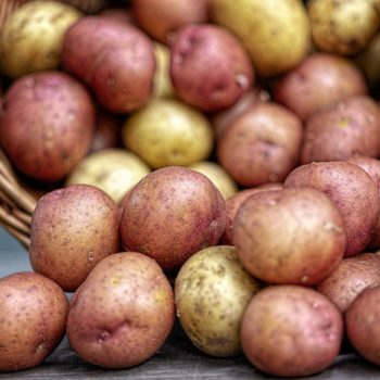 potatoes-4331742_1920